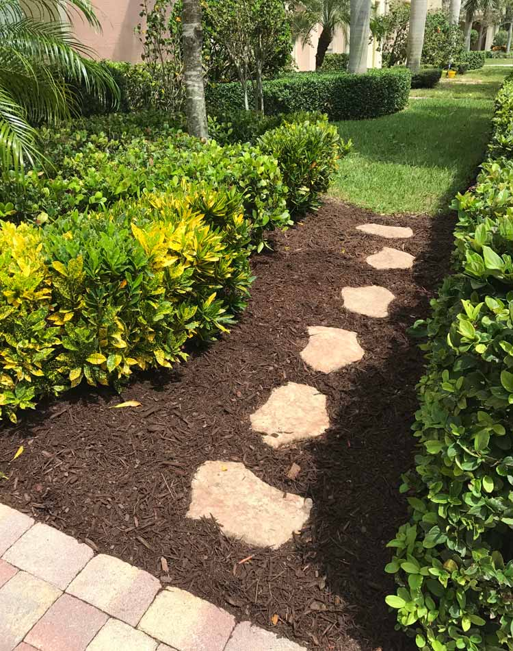 Lawn Maintenance Jupiter